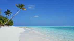 P00601 Maldives beautiful white sandy beach background with palm trees on sunny tropical paradise island with aqua blue sky sea wa. Maldives beautiful white Royalty Free Stock Photos