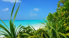 P00626 Maldives beautiful white sandy beach background with palm trees on sunny tropical paradise island with aqua blue Royalty Free Stock Image