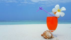 P01471 Maldives white sandy beach orange juice fruit cocktail on sunny tropical paradise island with aqua blue sky sea Royalty Free Stock Images