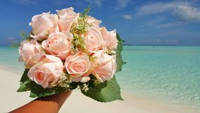 P00703 Maldives white sandy beach pink bouquet flowers on sunny tropical paradise island with aqua blue sky sea ocean 4k. Maldives white sandy beach pink bouquet Stock Photography