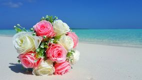 P00700 Maldives white sandy beach pink bouquet flowers on sunny tropical paradise island with aqua blue sky sea ocean 4k Stock Images