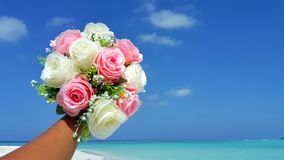 P00706 Maldives white sandy beach pink bouquet flowers on sunny tropical paradise island with aqua blue sky sea ocean 4k Royalty Free Stock Photos