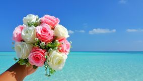 P00701 Maldives white sandy beach pink bouquet flowers on sunny tropical paradise island with aqua blue sky sea ocean 4k Stock Images