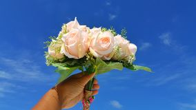 P00705 Maldives white sandy beach pink bouquet flowers on sunny tropical paradise island with aqua blue sky sea ocean 4k Royalty Free Stock Images