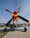 P-51 mustang Royalty-vrije Stock Foto
