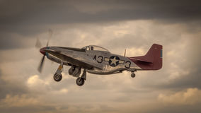 P51 Mustang in flight Royalty Free Stock Photography