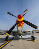 P-51 Mustang. Front view of a P-51 mustang Royalty Free Stock Photo