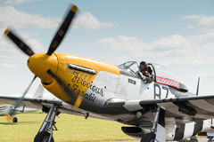 P51 Mustang Vintage Aircraft Stock Photo