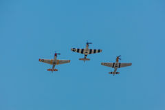 P-51 Mustangs Flying Stock Images