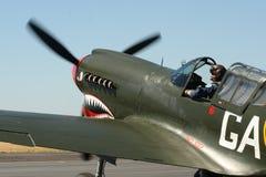 P40-N Kitty Hawk prepara per il volo Fotografia Stock Libera da Diritti