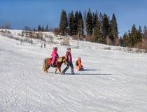 Pônei da equitação da menina na inclinação de montanha em Carpathians, Ukrain Fotografia de Stock Royalty Free