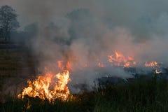 Płomienie na trawa kopu Obrazy Royalty Free