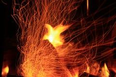 Płomienny feniks Zdjęcia Stock