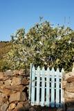 Płotowa i ogrodowa brama Obraz Stock