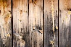 Płotowa nieociosana rocznika drewna tekstura Fotografia Royalty Free