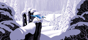 płotowa sójka niebieski Zdjęcia Royalty Free