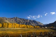 płotowy krajobraz Zdjęcie Stock