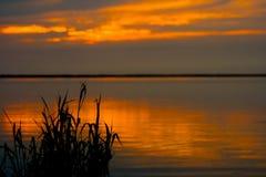 Pôr do sol de relaxamento Imagem de Stock Royalty Free