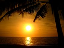 Pôr-do-sol na praia Imagem de Stock Royalty Free