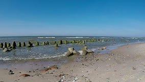 P? stranden av Orzechowo baltiskt hav lager videofilmer