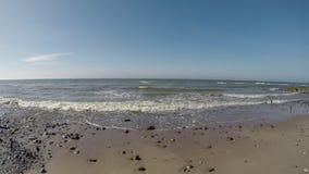 P? stranden av Orzechowo baltiskt hav arkivfilmer