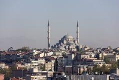¼ p Sultan Mosque de Eyà en Estambul, Turquía Foto de archivo libre de regalías