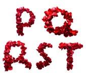P - T feito das pétalas vermelhas levantou-se Fotografia de Stock Royalty Free