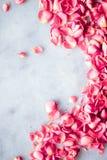 P?talos de Rose en la piedra de m?rmol, fondo floral foto de archivo