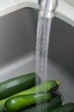 Płuczkowy Zucchini zdjęcie royalty free