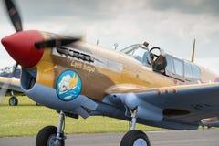 P40 Warhawk vintage aircraft Royalty Free Stock Images