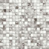 płytka mozaiki Zdjęcie Stock