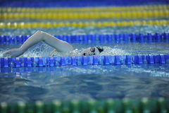 Pływacka rywalizacja Zdjęcia Stock