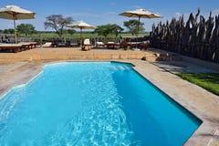 Pływacki basen, Namibia Obraz Royalty Free
