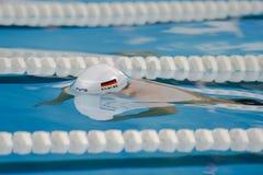 Pływacki Benjamin Motyl Starke Fotografia Royalty Free