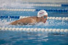 Pływacki Benjamin Motyl Starke Obrazy Stock