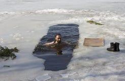 pływacy zimy. Zdjęcia Stock