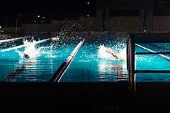 pływaczka Obrazy Royalty Free