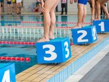 Pływaczki na zaczyna bloku Zdjęcie Royalty Free