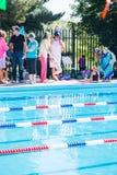 Pływania spotkanie Zdjęcie Royalty Free