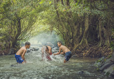 Pływanie w strumieniu Fotografia Stock