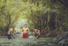 Pływanie w strumieniu Zdjęcia Royalty Free