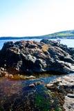 Pływowi baseny w Acadia parku narodowym Fotografia Stock