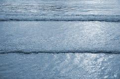 Pływowy nudziarz zdjęcie royalty free