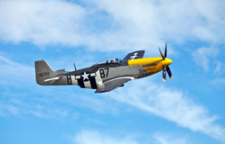 P51 - Mustang - Ferocious Frankie Stock Photography