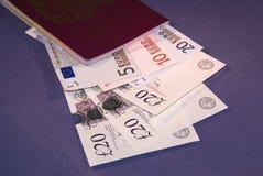 Paß mit Bargeld Lizenzfreies Stockfoto