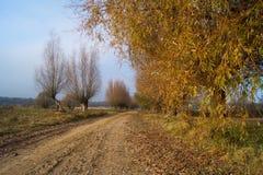 País, camino del otoño imagenes de archivo