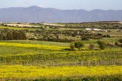 País da paisagem Foto de Stock