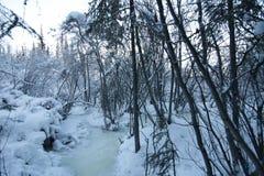 País das maravilhas do inverno fotos de stock royalty free