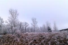 País das maravilhas do inverno Imagens de Stock Royalty Free