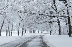 País das maravilhas do inverno da neve nova. Fotografia de Stock
